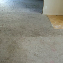 floor cleaning services denver