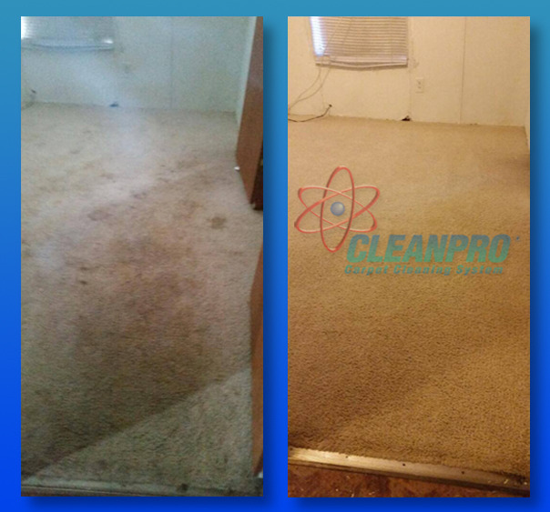 cleaning companies denver